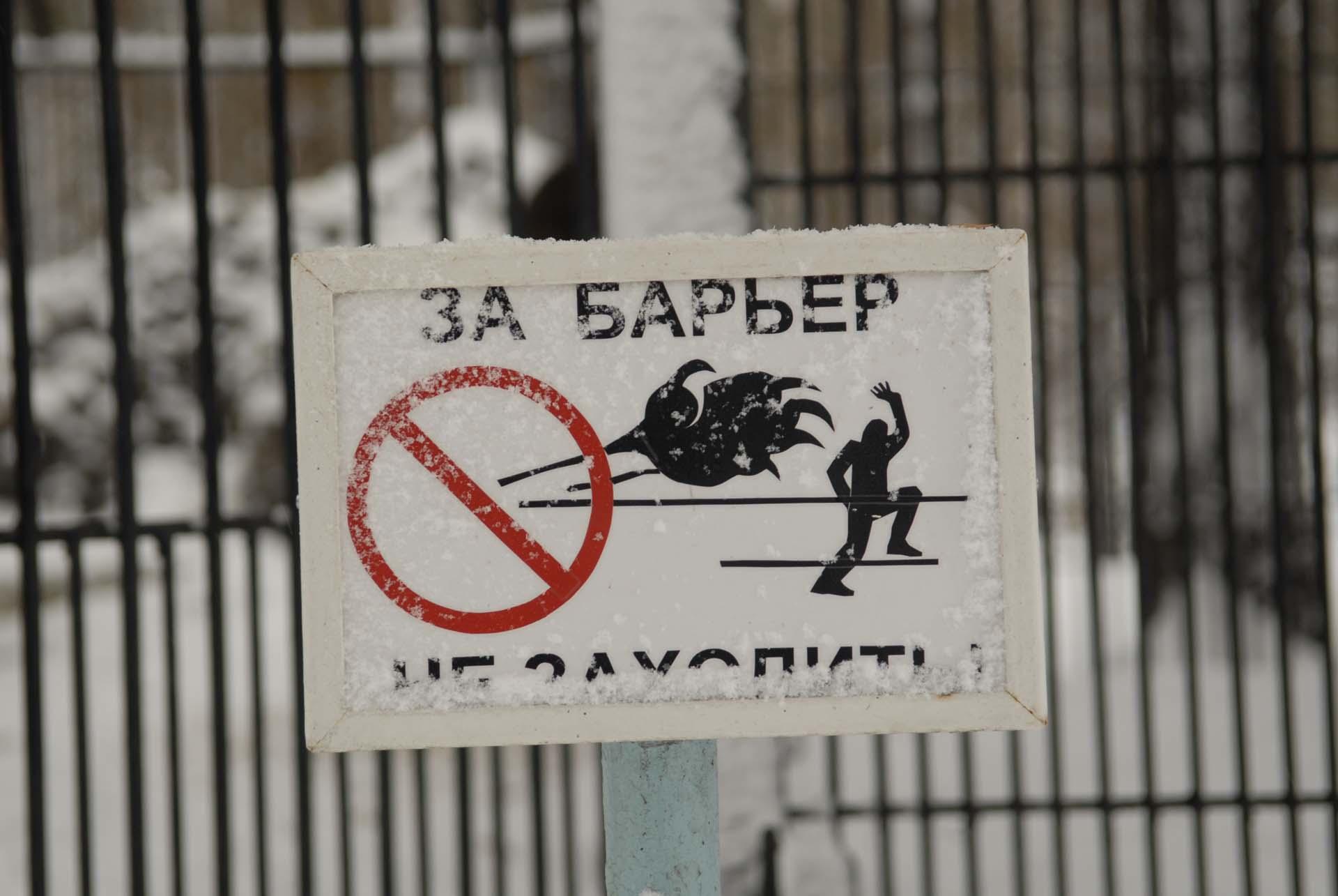 2009_11_Novosibirsk_010