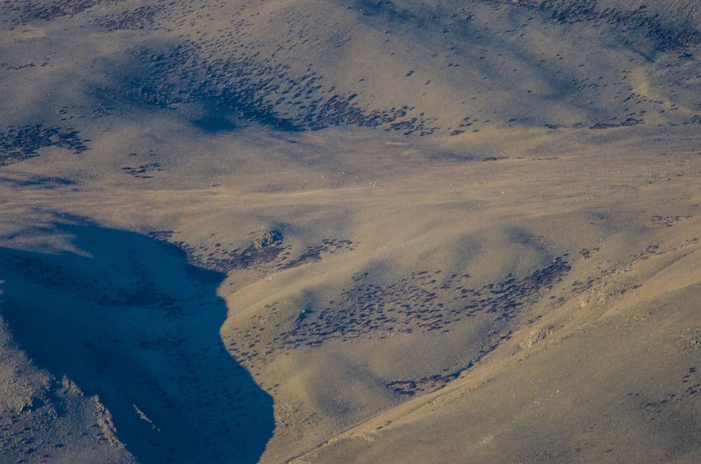 Ladakh_2015-103