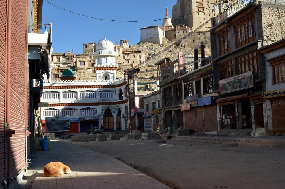 Ladakh_2015-149