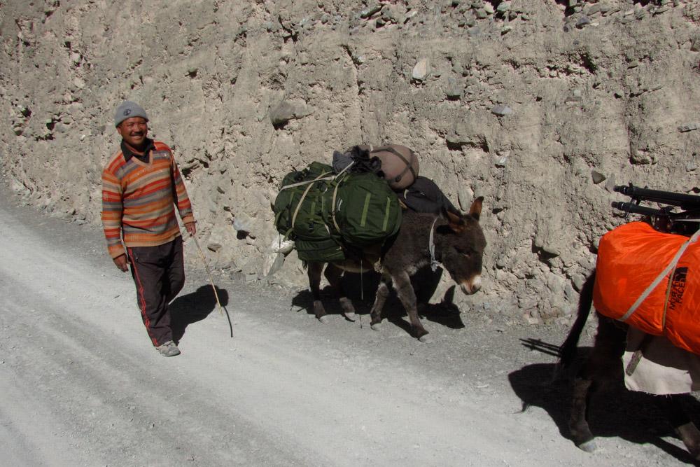 Ladakh_2015-193