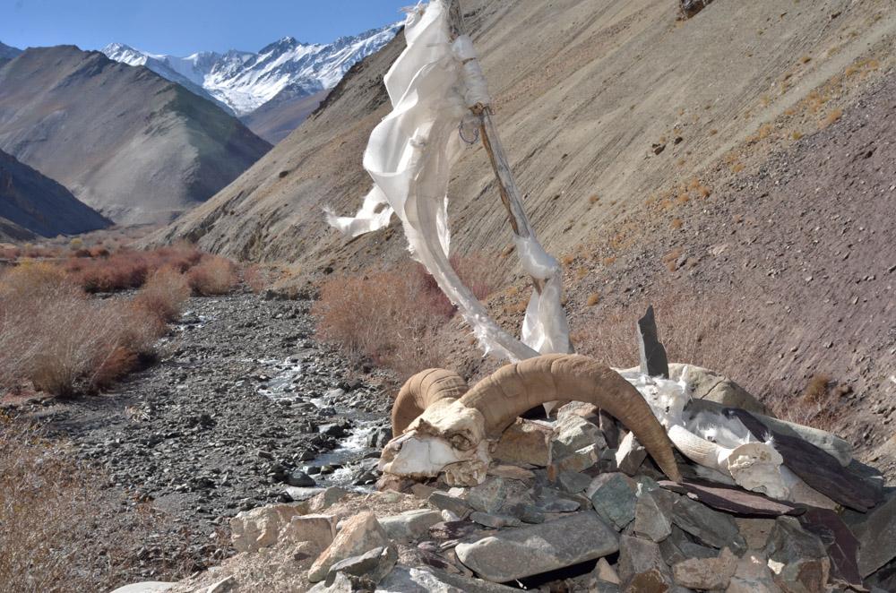 Ladakh_2015-211