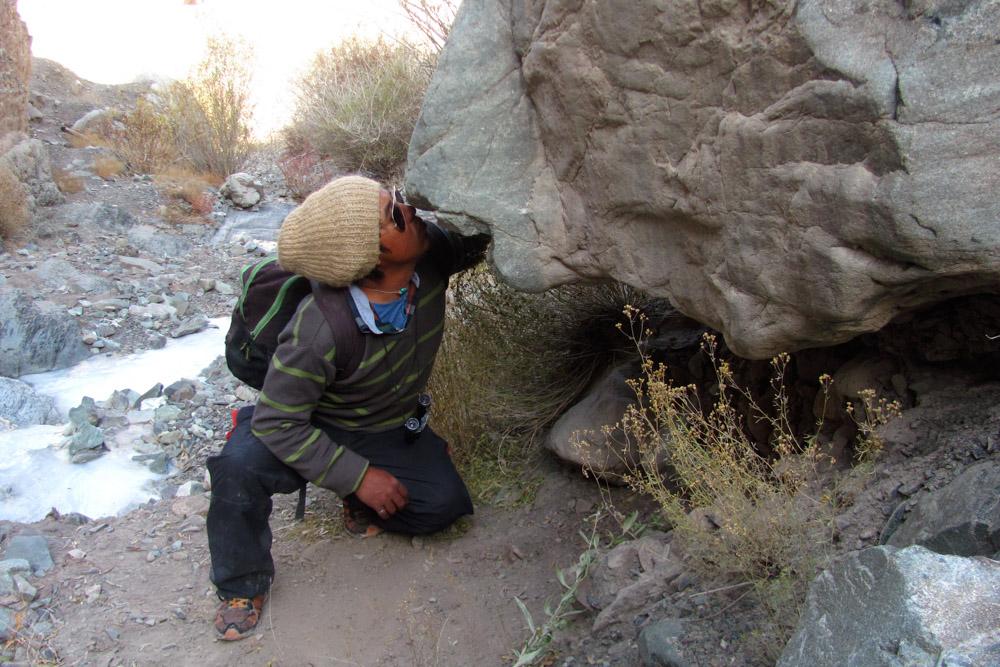 Ladakh_2015-221