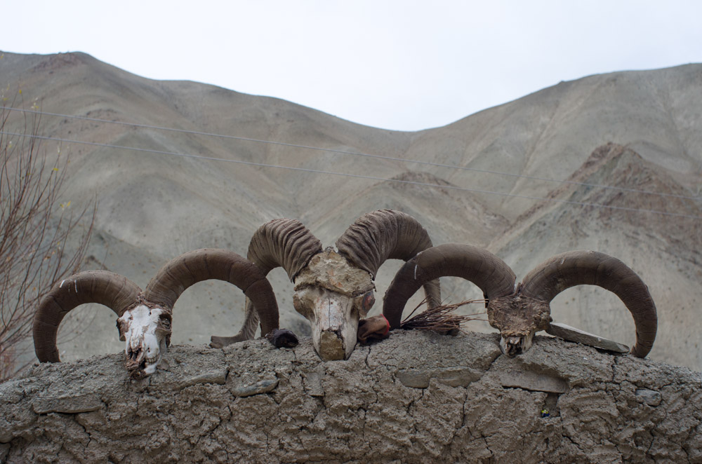 Ladakh_2015-262