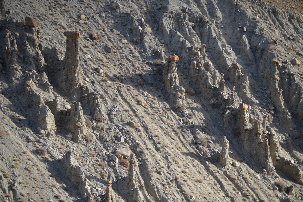 Ladakh_2015-66