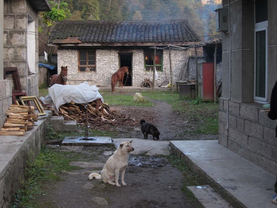 2010_China_033