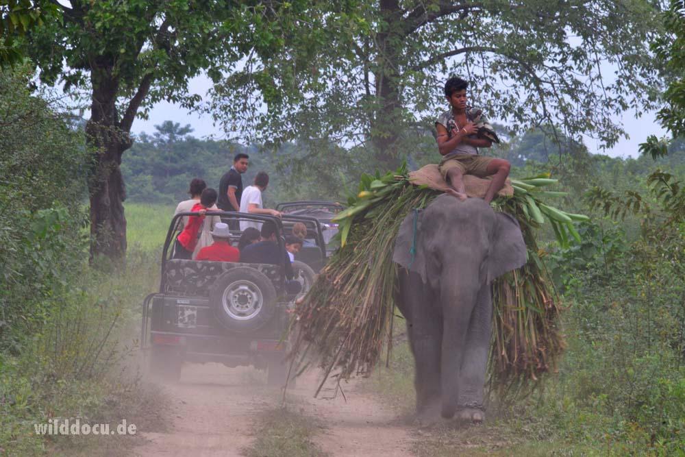 india-bhutan_2016_039